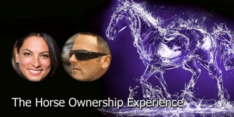 Programme: The Horse Ownership Experience